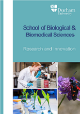 Research and Innovation in Biological and Biomedical Service