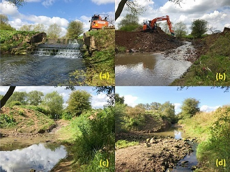 Weir on a Northeast English stream removed by Tees Rivers Trust -  a) before, b) during, c) after, d) 17 months after, removal.