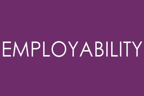 Careers, Employability and Enterprise Centre : Develop ...