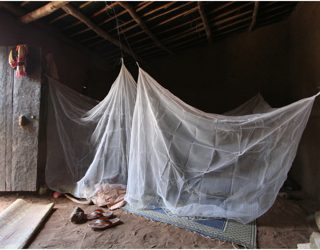 New type of bed net could help fight against malaria