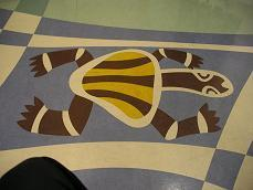 Paediatric Dept Floor: James Cook University Hospital