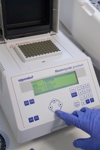 Department Of Biosciences Gradient Pcr Machine
