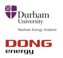 Durham Energy Institute