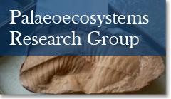 Sedimentology Research Group link button