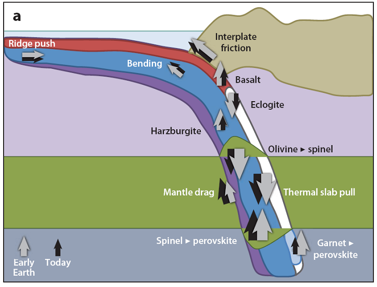 Subduction Schematic