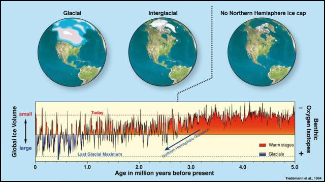 The Quaternary period is from c. 2.6 ma BP.  From this time global glacial cycles commenced and the earth progressively cooled.