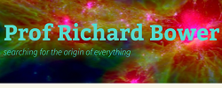 Prof Richard Bower Blog