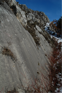 A typical fault scarp from the Apennines