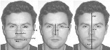 Measurements taken of fathers and stimulus faces