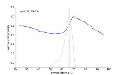 Experimental fluorescence data from one representative well (blue dots), first derivative and calculated Tm of 66 ˚C.